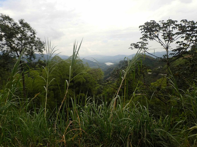 Columbian Scenery (Photo and caption credit: Sue's Blog)