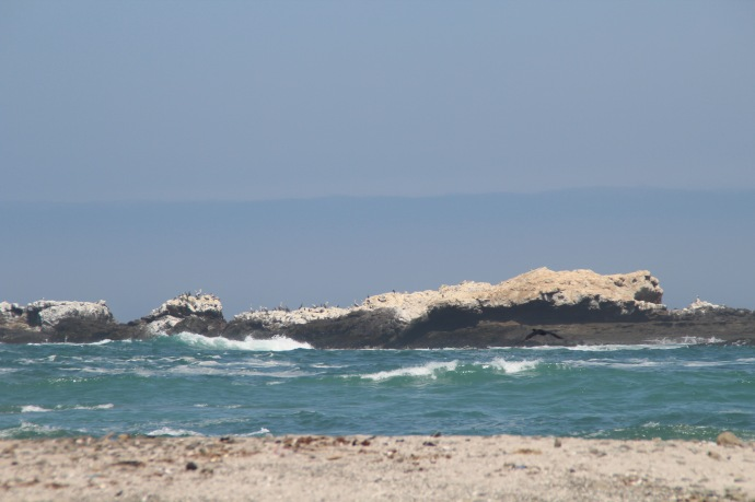 Guano covered rocks with Pelicans