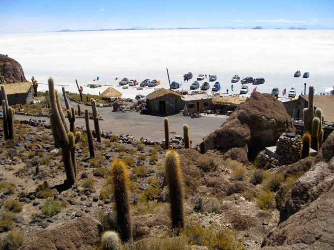 The island on the Bolivian salt flats (Photo credit: Sue's blog)