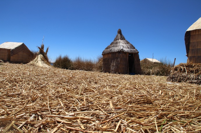 View of the floating island, ground surface covered in dried reeds