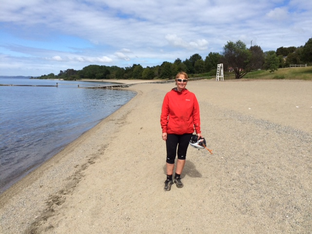 Lago Ranco sandy beach, lovely beach.