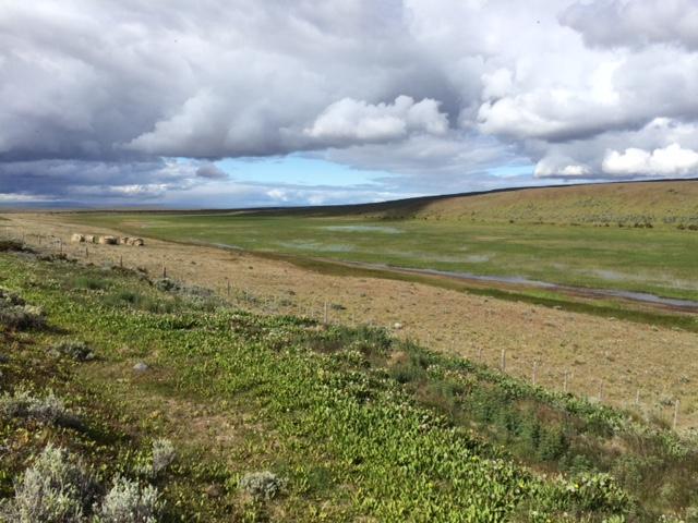 Patagonia farm land