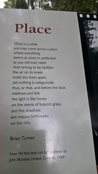 Poem at Lake Matheson